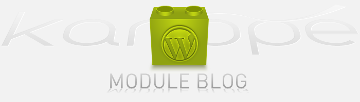 module de blog wordpress